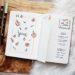Bullet Journal : un mois de juin peachy !